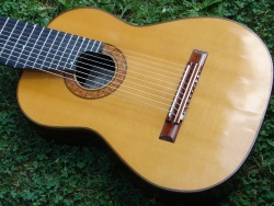 Thomas Humphrey 10-string guitar.